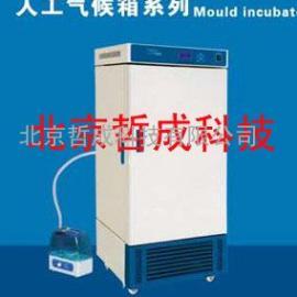生产人工气候箱/人工气候箱价格现货
