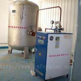 电加热蒸汽烘干杀菌锅炉