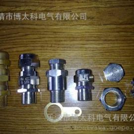 防爆电机配套用电缆接头 EXDIICT6 黄铜 不锈钢 IP67