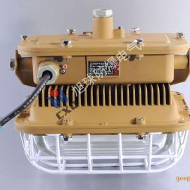 SBD1101-YQL50C1管吊式防爆灯