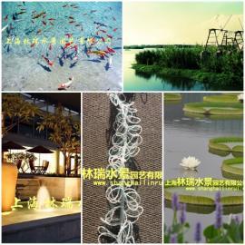 景观水设备_人工水草