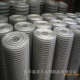 抹墙专用铁丝网