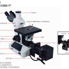 ISM-M1000-Y英仕INSIZE双目倒置金相显微镜