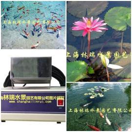 公园景观水处理_超声波控藻仪