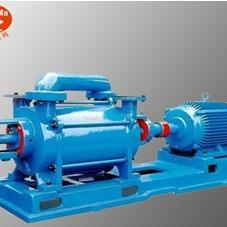 2SK两级水环式真空泵,水环式双级真空泵