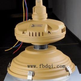 sbd1105 yql120低频无极灯/免维护防爆节能灯