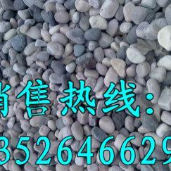 五颜六色天然鹅卵石生产厂家