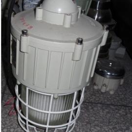 BAD61防爆无极灯(IIC)