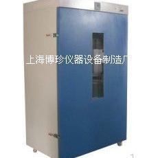 DHG-9640A立式250度电热鼓风干燥箱 恒温烘箱