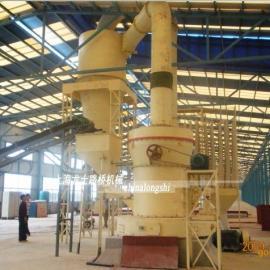 上海大型雷蒙磨粉机