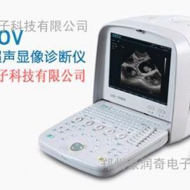 宠物动物B型超声妊娠疾病诊断仪