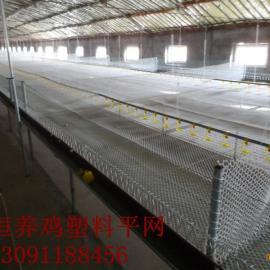 饲养肉鸡塑料平网 塑料平网价钱 万恒塑料养殖网值得信赖