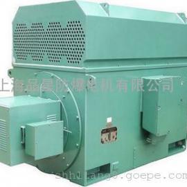 YP、YPKK变频电机 水泵电机