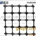 塑料土工格栅TGSG5050双向拉伸塑料土工格栅