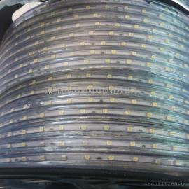 led3528高压灯条 10mm板材高压灯条防水