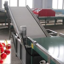 樱桃清洗保鲜处理分选机,樱桃自动选果机