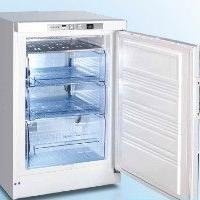 零下四十度冰柜92升