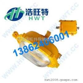 专业LED防爆平台灯,专业LED防爆平台灯生产厂家