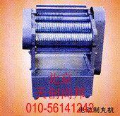 DZW型电动制丸机生产厂家