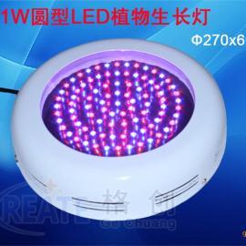 90W 圆型LED植物生长灯