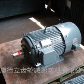 YVP.YTPS变频调速电机