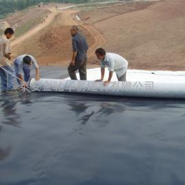 垃圾填埋场HDPE土工膜|土工膜|生活垃圾填埋场覆盖土工膜