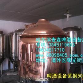沈阳自酿啤酒设备