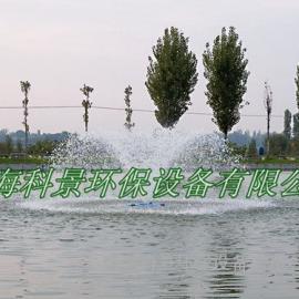 景观水处理设备-提水喷泉曝气机