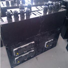 防爆防腐配电箱,机旁防爆配电箱BXD,防爆防腐动力配电箱