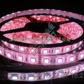 新款灯条led2835灯条 热卖中 各个规格的都有