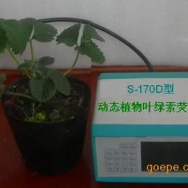 动态连续监测叶绿素荧光仪,动态叶绿素荧光测定仪