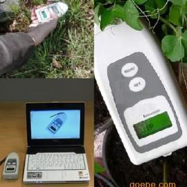 手持植物叶绿素荧光仪,叶绿素荧光测定仪,效能效率分析仪