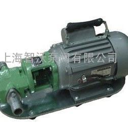 WCB-75P不锈钢单相防爆齿轮泵 柴油泵 润滑油泵