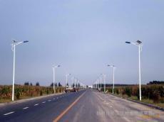 销售批发6米LED太阳能道路灯【厂家直销,质优价廉】