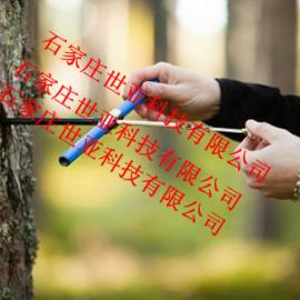 湖南树木生长锥