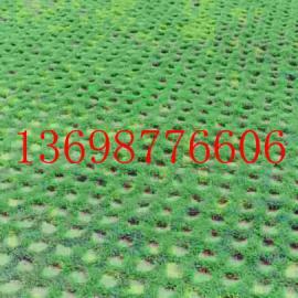 云南草坪绿化用植草格