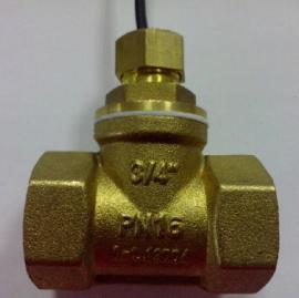 FS-DN20T型液位开关