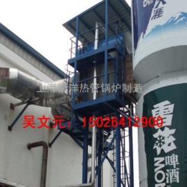 废气余热蒸汽发生器