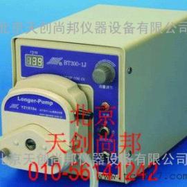 BT300-1J蠕动泵厂家电话