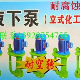 立式防腐水泵