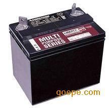 枣庄大力神LBT12v100电池蓄电池潍坊双登GFM-500