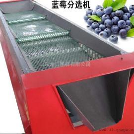 无挤伤蓝莓自动分级机,蓝莓分拣选果机