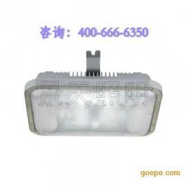 海洋王 NFC9175长寿顶灯//无极灯40W