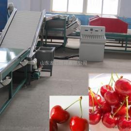 樱桃清洗分选保鲜处理设备,樱桃选果机市场报价