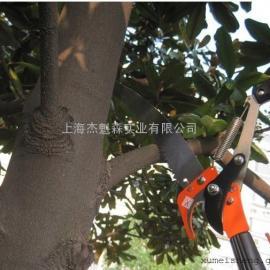 鹤龟利器台湾原产3米5米高枝剪高枝锯、摘果剪、采果剪