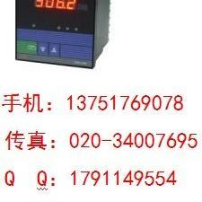 SWP-DC-C901-02-05-N电流表