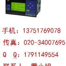 SWP-LCD-NL801智能防盗流量积算仪