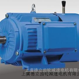 Y2EJ,Y2DEJ系列电磁制动电机
