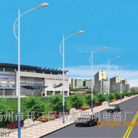 低碳节能环保道路灯厂家生产,6米道路灯生产