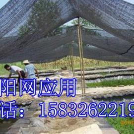 供应抗老化遮阳网 遮阳网规格最全 黑色三针遮阳网厂家报价